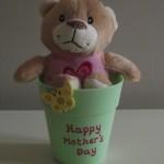 Mothers Day Teddy Bear in Flower Pot